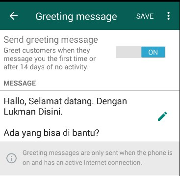 auto reply whatsapp bisnis
