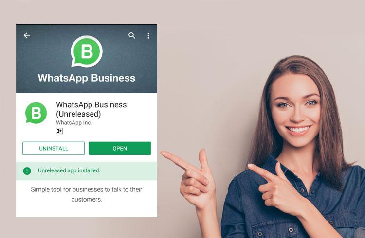 Cara instal Whatsapp Bisnis